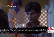 Age is Just a Number Zee world Teasers August 2020